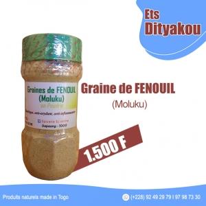 GRAINE-DE-FENOUIL-MOLUKU ETS DITYAKOU